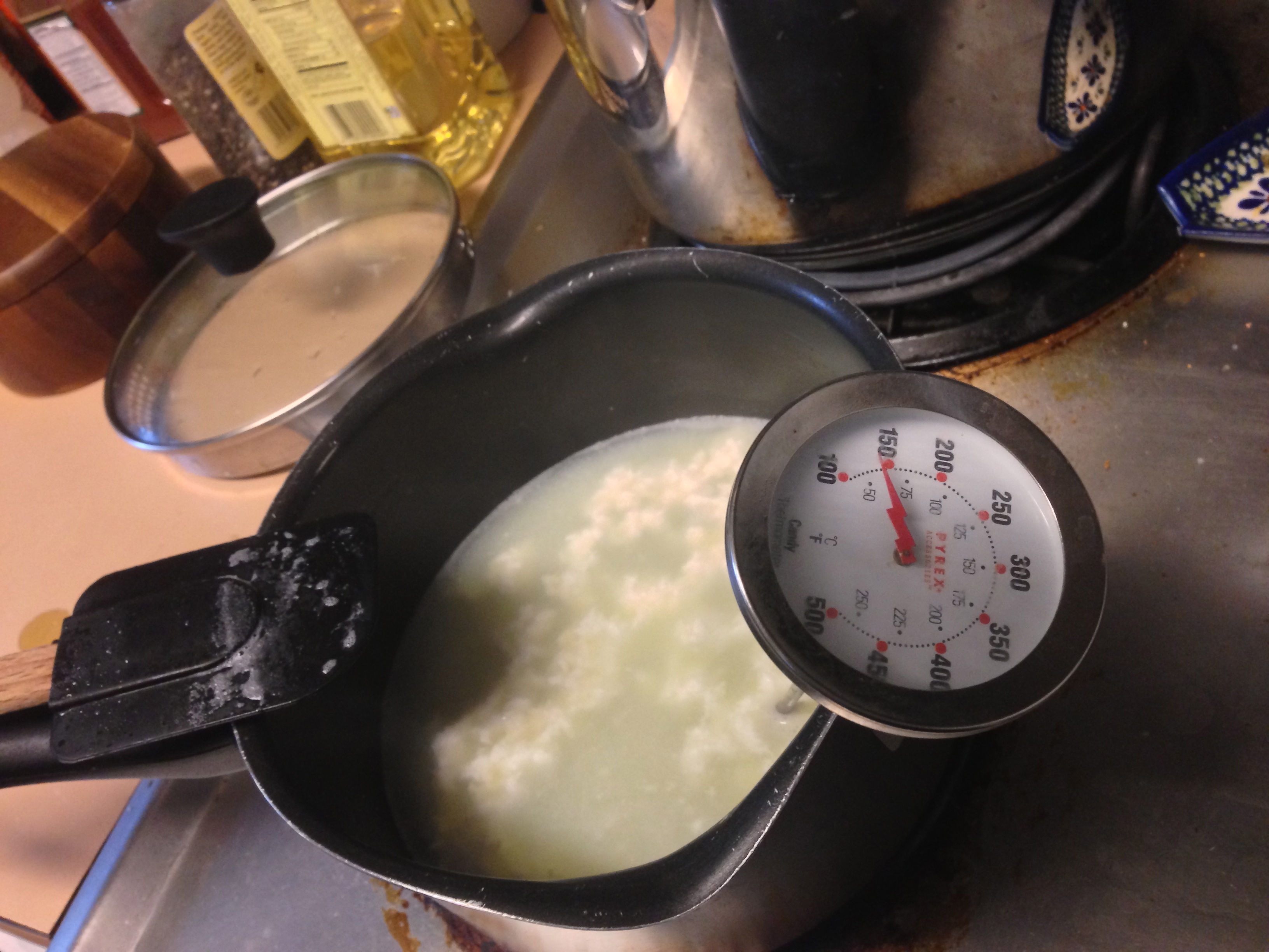 Adventures With Raw Milk Part 3: Ricotta (I Think?)