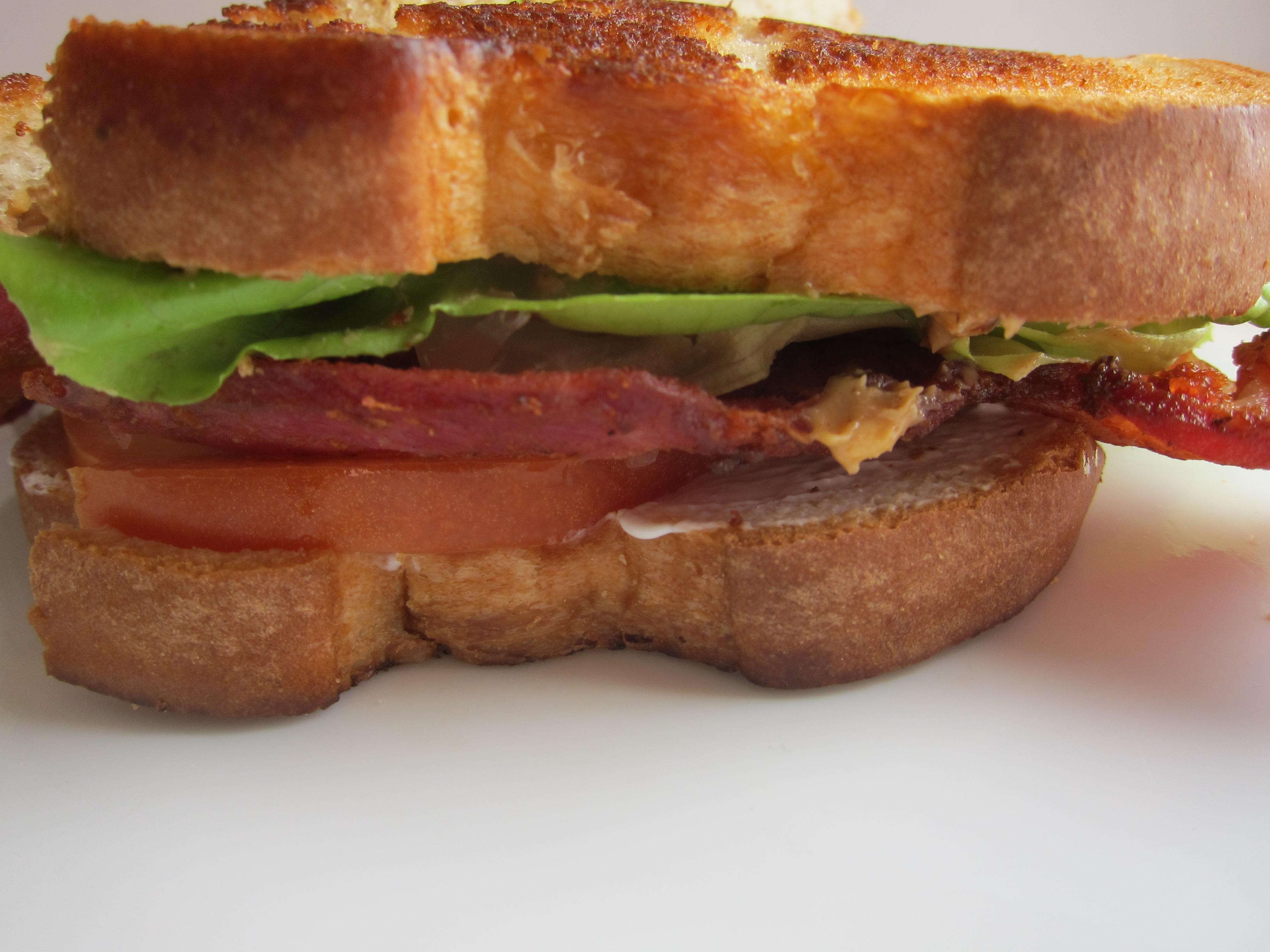PBBLTS – Peanut Butter, Bacon, Lettuce, Tomato, Sour Cream – Sandwich