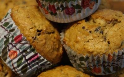 Cranberry Orange Oatmeal Muffins