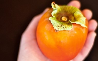 Thursday Link Rodeo: Persimmons